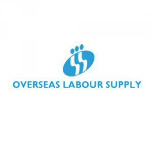 Overseas Labour Supply Dubai