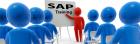 Online SAP training center in dubai