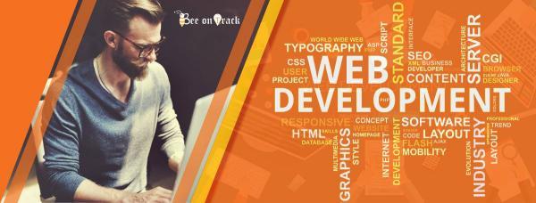 Website Development and Designing