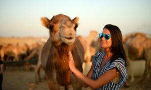 Best Desert safari deals in dubai