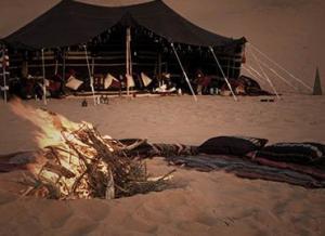 Desert safari dubai by Dream night tourism