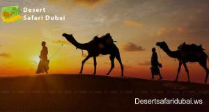 Best Desert Safari in Dubai – Desertsafaridubai.ws