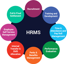 HRMS | HR and Payroll Software Abu Dhabi, Dubai & UAE