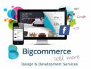 Big Commerce Development & Design Service in Dubai