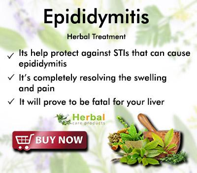 Epididymitis Herbal Treatment