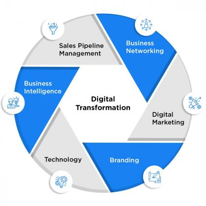 Business Consultancy & Marketing Solutions | UAE