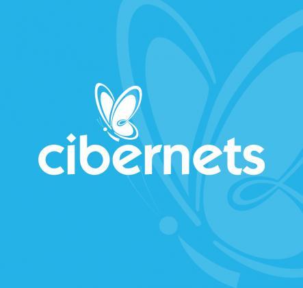 Cibernets Web Design L.L.C.
